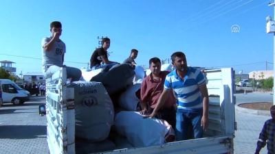 Midyat'taki sığınmacı kampı boşaltılıyor - MARDİN