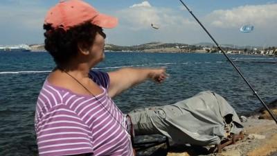 Foça'da deniz temizliği devam ediyor