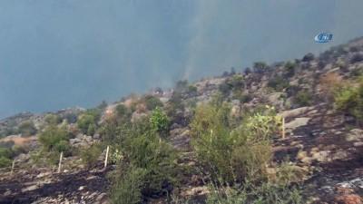 Tarihi Kozan Kalesi'nde orman yangını