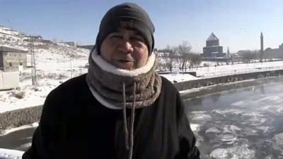 Hava sıcaklığının sıfırın altında 28 dereceye düştüğü Kars'ta ağaçlar buz tuttu