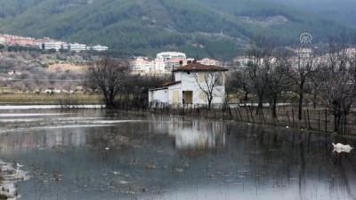 trafik kazasi - Sağanak nedeniyle tarım arazilerini su bastı - MUĞLA