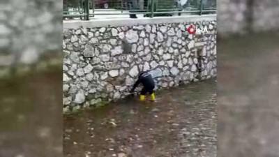 Kediyi kurtarmak için itfaiye ekipleri seferber oldu