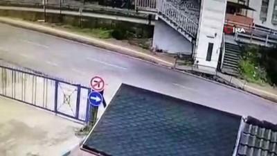 Otomobilin yavru köpeği ezme anı kamerada