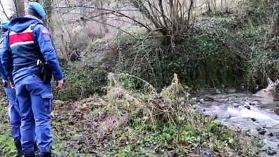 Yaralı geyik donmak üzereyken kurtarıldı - BOLU