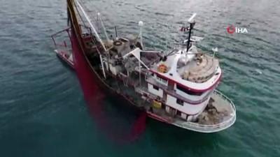Karadeniz'de torik bereketi