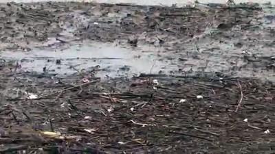tarim - İzmir'de şiddetli yağış düden oluşturdu