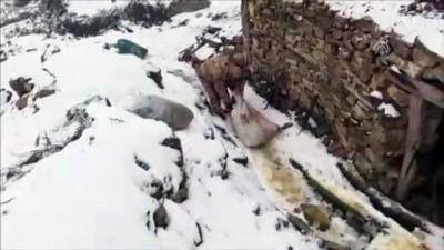 Minareye saklanmış esrar ele geçirildi - DİYARBAKIR