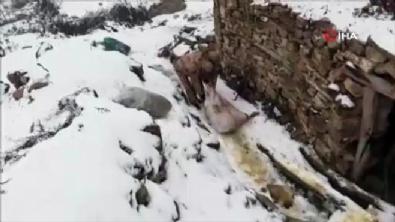 diyarbakir - Teröristlere yardım eden 6 hain yakalandı