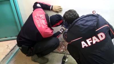 mahsur kaldi -  4 gündür asansör boşluğunda mahsur kalan kediyi AFAD kurtardı