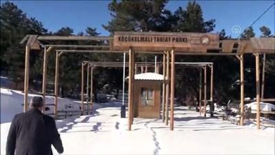 Küçükelmalı Tabiat Parkı'ndaki göletin yüzeyi buz tuttu - BİLECİK