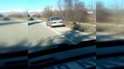 Otomobilin arkasına bağladığı köpeği metrelerce çekerek böyle götürdü