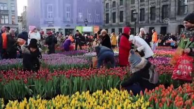 Hollanda'da 'Ulusal Lale Günü' etkinliği - AMSTERDAM