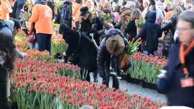 - Hollanda'da Ulusal Lale Günü'ne Yoğun İlgi