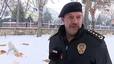 hassasiyet -  Sokak hayvanlarına polis merhameti