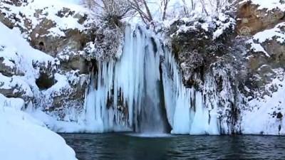 Sırakayalar Şelalesi'nde buzdan şölen - BAYBURT