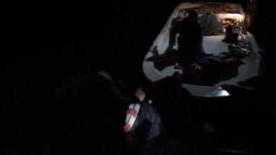 Kamyonet denize devrildi: 2 yaralı - SİNOP
