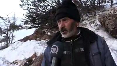 Telef olmuş 5 dağ keçisi bulundu - ADIYAMAN