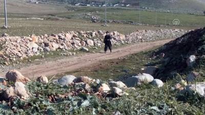 91 yaşındaki Iraklı Azizi her gün 2 saat yürüyüş yapıyor - SÜLEYMANİYE