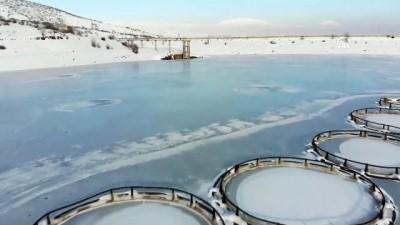 Göyne Sulama Barajı buz tuttu - ERZİNCAN