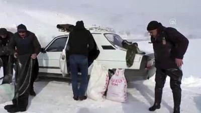 Dondurucu soğukta balık avı - AĞRI
