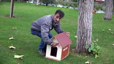 Sokak kedileri için sıcak evler kuruldu