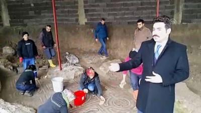 insaat firmasi - Binlerce yıllık mozaikte turp figürü - OSMANİYE