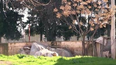 Suriye sınırında 191 kilogram patlayıcı ele geçirildi - MARDİN