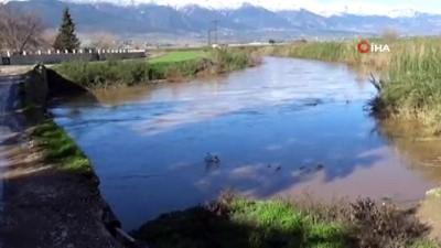 muslu -  Baraj kapakları açıldı Amik Ovası su altında kaldı