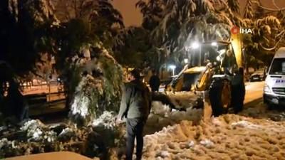 - Kara dayanamayan ağaç otomobilin üzerine devrildi