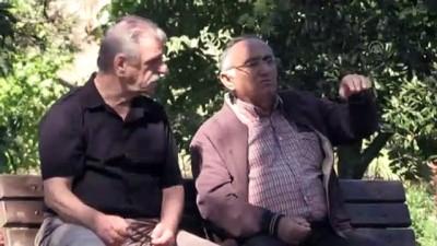 Mutlu şehrin yaşlılarının huzurlu yaşamı - SİNOP