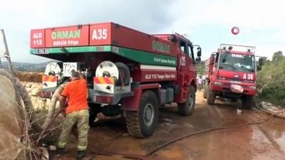 Erdemli'de 10 hektar kızılçam ormanı yandı İzle