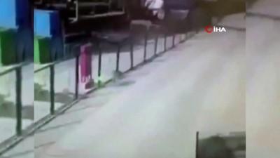 sokak kopegi -  Vicdansız sürücü yol kenarındaki köpeği böyle ezdi