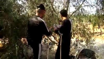 haziran ayi - İsrail'in sakat bıraktığı Filistinlilere uzanan 'zeytin dalı' - GAZZE