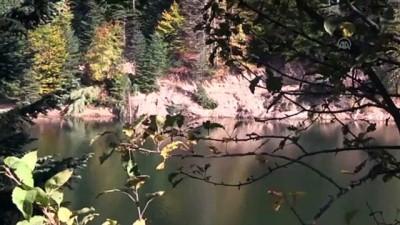 Bozcaarmut Göleti'nde renk cümbüşü - BİLECİK