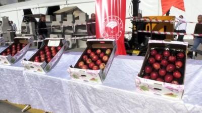 'En iyi elma' yarışması düzenlendi - NİĞDE