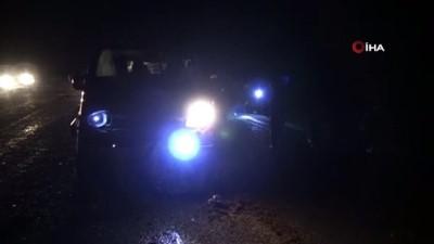 Minibüs sürüye daldı: Şoför yaralandı, 30 koyun telef oldu