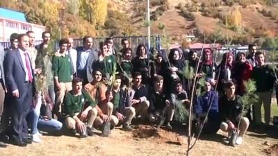 '11 Milyon Ağaç; Bugün Fidan, Yarın Nefes' programı - HAKKARİ