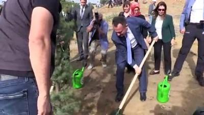 32 bin fidan toprakla buluşturuldu - BİLECİK