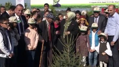 Bakan Zümrüt Selçuk, Sinop'ta fidanları toprakla buluşturdu