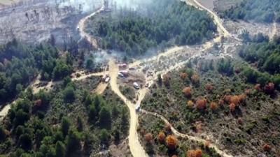 Tavşanlı'da orman yangınında 3 hektar alan zarar gördü - KÜTAHYA