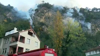Orman yangını - BARTIN