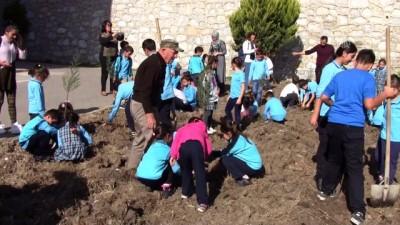 Tohumlarını Anıtkabir'den getirerek yetiştirdiği fidanları toprakla buluşturdu - BALIKESİR