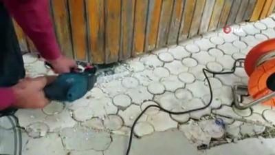 Kameriyede kırlangıç kurtarma operasyonu