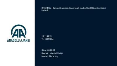 Denize düşen kanadı kırık martıyı Sahil Güvenlik ekipleri kurtardı - İSTANBUL
