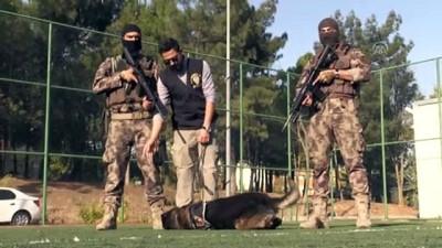 'Bomba avcısı Timsah' emekliye ayrıldı - GAZİANTEP