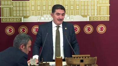 AK Parti'li Çelebi: '2020, İshak Paşa Sarayı Yılı olsun' - TBMM