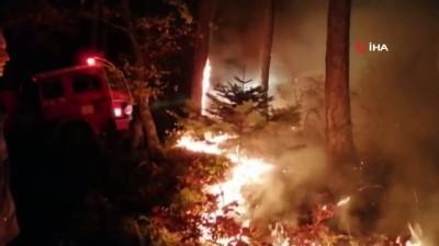 Çanakkale'de korkutan yangın Video