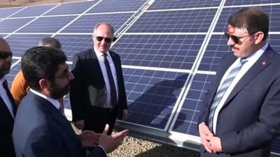 Sivas'ta 50 dönümlük enerji tarlası kuruldu