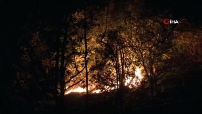 orman mudurlugu -  Rize'de orman yangını
