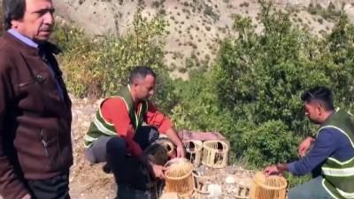 Kaçak keklik avcılarına ceza - TUNCELİ